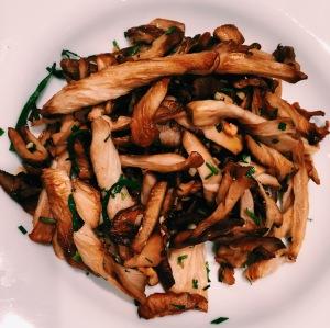 poelee - champignons  - pret a pousser