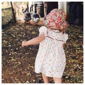 poules - poulailler - bébé - vacances